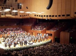 Orchestras are bewildered organisms, don't know which way is up
