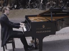 cow-piano