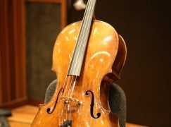 I left a 300 year-old cello in my car and it got stolen