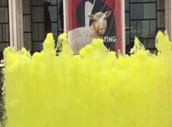 Lincoln Center goes yellow